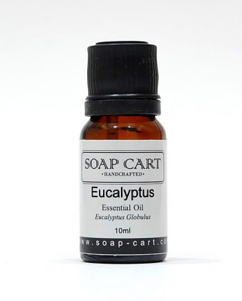 Eucalyptus Blue Gum Essential Oil